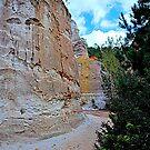 Providence canyon  by Tracey Hampton