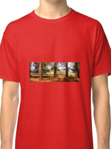 Redwoods and vineyards Classic T-Shirt
