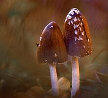Inkcap mushrooms by viktori-art