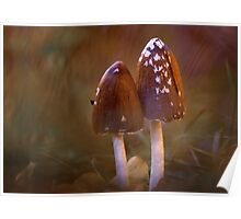 Inkcap mushrooms Poster