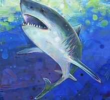Great white shark by Gwenn Seemel
