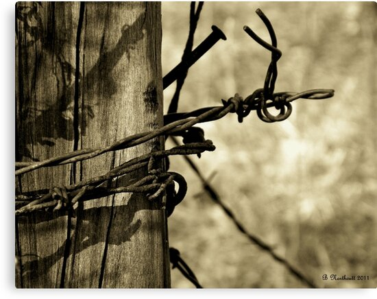Don't Fence Me In 2 - Barbed wire on post in sepia by Betty Northcutt