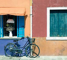 Bicycle  by areyarey