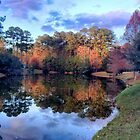 Sun City, Bluffton, South Carolina by fauselr