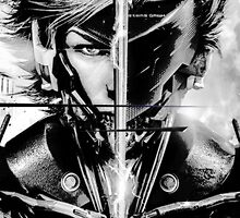 Raiden Metal Gear Rising by malapipa
