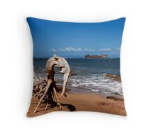 Shipwreck Beach .2 Throw Pillow