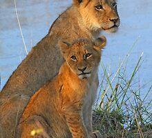 A cosy mother and child! by jozi1