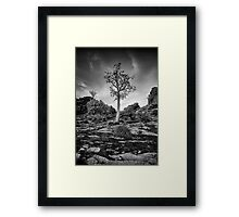 Boab on a Hill Framed Print