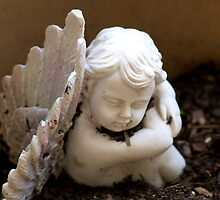 Angel in the Garden by Renee Hubbard Fine Art Photography