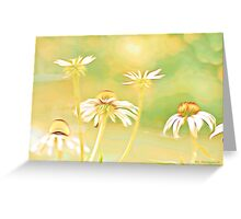 Painted Pastel Daisies Greeting Card
