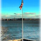 Flag Over Ellis Island by Dyle Warren