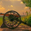 Civil War Cannon at Gettysburg by Dyle Warren