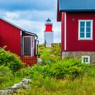 Red Houses and Lighthouse by Michael Brewer
