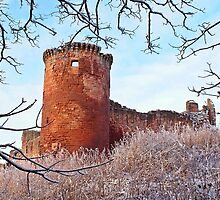 Frosty Bothwell Castle by Escocia Photography