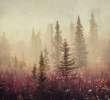 Wander in the Fog by Priska Wettstein
