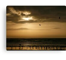 Morning Tide Canvas Print