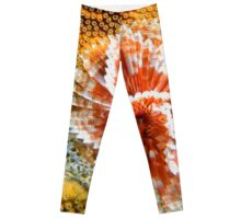 Red and White Feather Duster Coral Worm Leggings