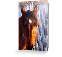 Rafter Greeting Card