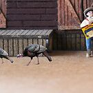 It's a trick…run!!!!  When he said 'turkey wraps', he wasn't getting coats for us!!!! by Susan Littlefield
