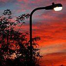 sunset streetlight by Luke Lansdale