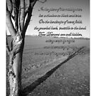 The Photo-Poetry Calendar Project (by Mogeo Photographic & Ange Chan) by MoGeoPhoto