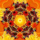 Pinata by JimPavelle