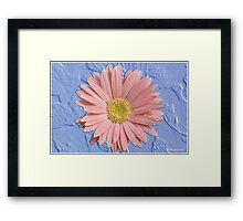 Pastel Dream - A Spring Daisy Framed Print