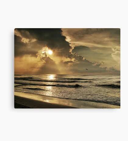 Glorious Moment Canvas Print