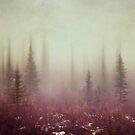 Hazy Days by Priska Wettstein
