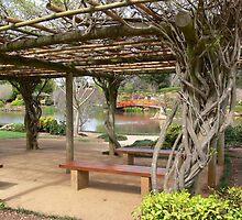 Japanese Gardens, Toowoomba  by PhotosByG