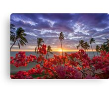 Coloured Sunsets Canvas Print