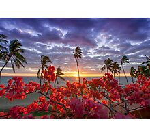 Coloured Sunsets Photographic Print