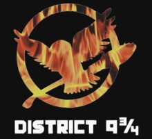 District 9 and 3 quarters by plantmasta89