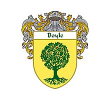 Boyle Coat of Arms/Family Crest Photographic Print