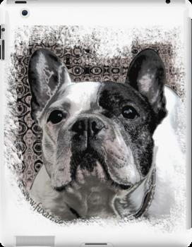 french bulldog by fuxart