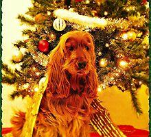 KIM - Christmas card (III) by chelo