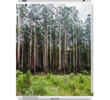 Mountain Ash Forest iPad Case/Skin