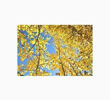 Golden Fall Aspen Trees in Colorado T-Shirt