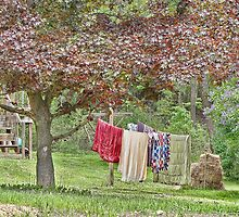 Laundry on the Line by vigor