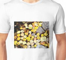 Aspen Leaves and Fall Colors in Colorado Unisex T-Shirt