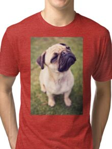 Cheesy Smile Pug *PROCEEDS TO CHARITY* Tri-blend T-Shirt