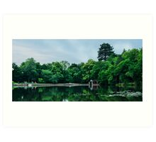 Buchan Country Park Art Print