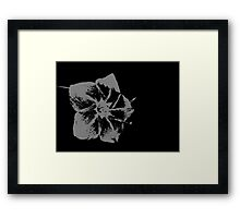 Nice touch Framed Print