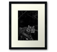 Look to the Sky Framed Print