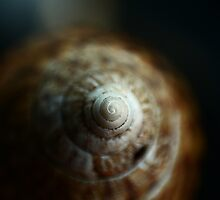 Spinning into oblivion by Graeme M