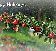 Happy Holidays Card by Paula J James