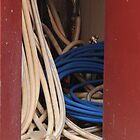 Hoses in the Market Cupboard by Trevor Corran
