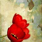 Lovely Red Flowers With Moody Grunge Canvas Texture and Stains by Denis Marsili