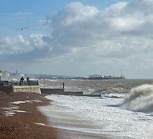 Brighton Sea by Sue Robinson