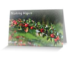 Nadolig Hapus - Cerdyn Nadolig Greeting Card